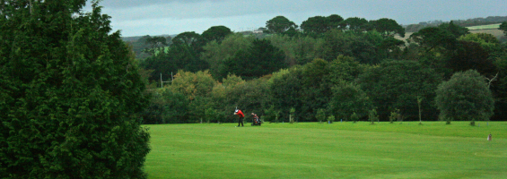 21st crystal day lion truro golf day