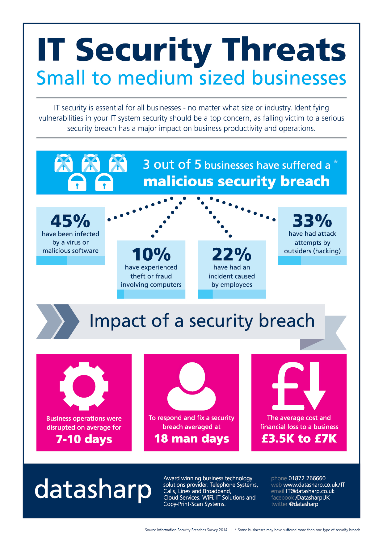 IT Security Infographic 2014